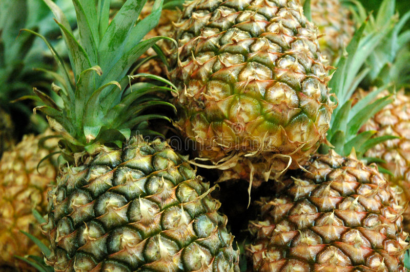 O Pinapples 2 foto de stock