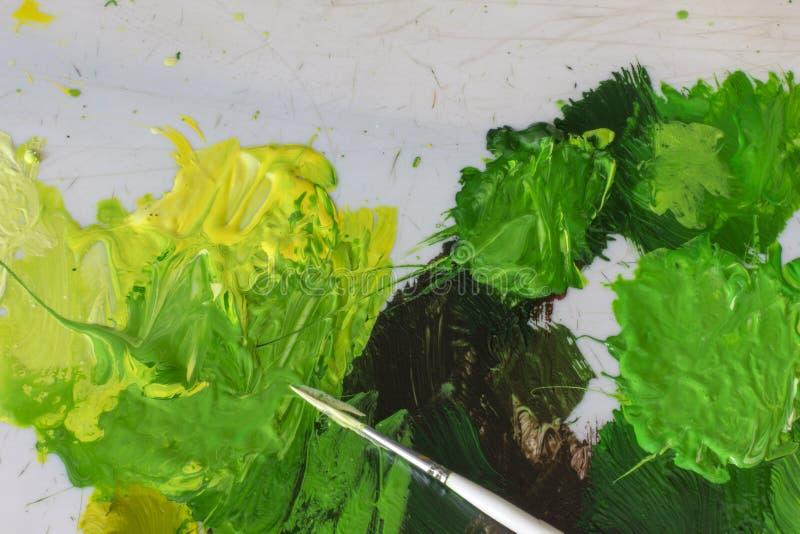 O pincel branco da escova e o acrílico verde do óleo pintam na paleta artística ilustração royalty free
