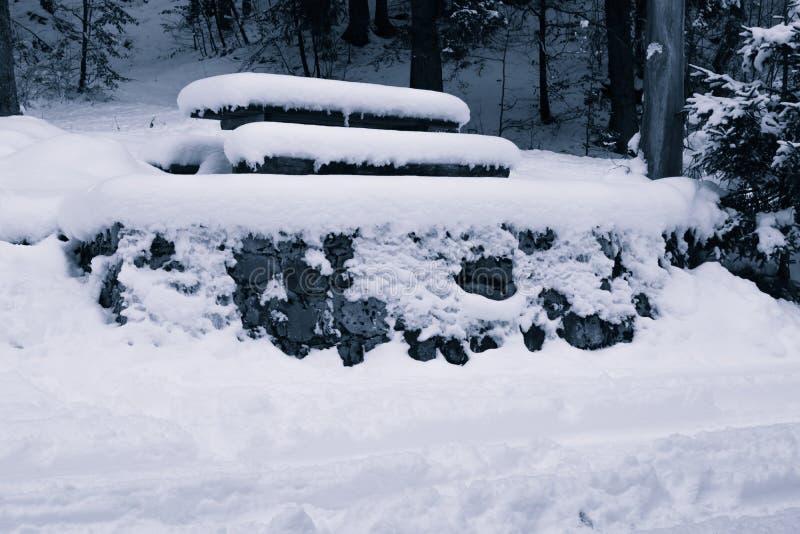 O piquenique refrigera para fora o lugar coberto na neve foto de stock