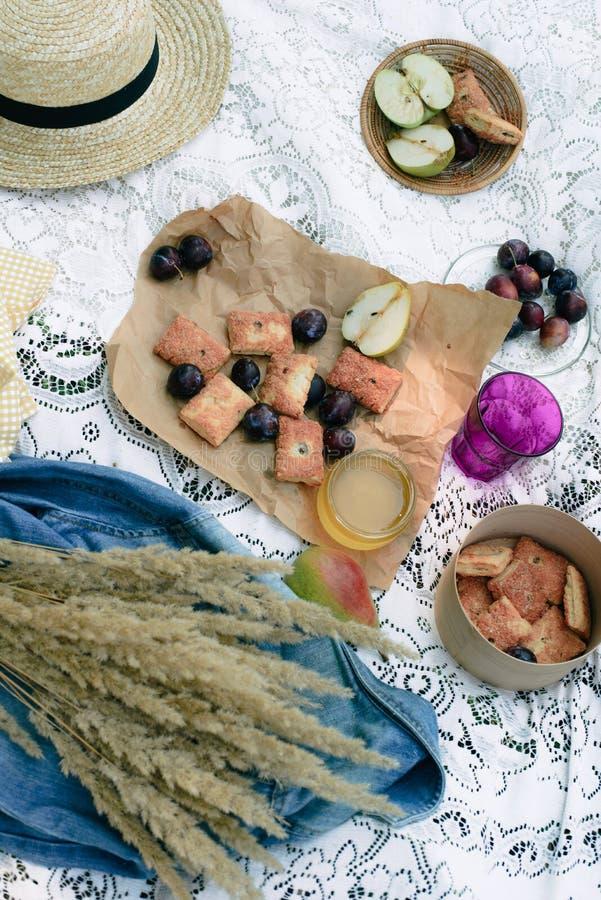 O piquenique saudável por umas férias de verão com recentemente coze, fruto fresco, maçãs, ameixas imagem de stock