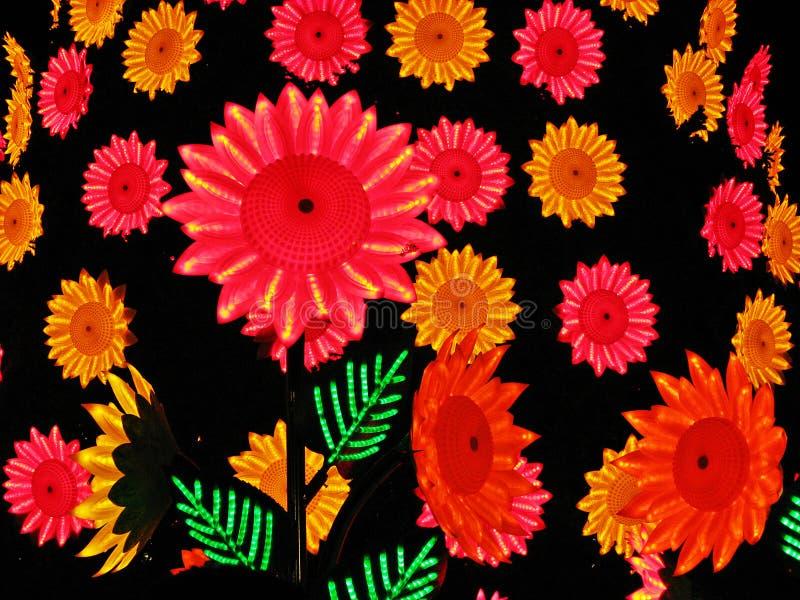 O plástico colorido floresce o fundo imagem de stock