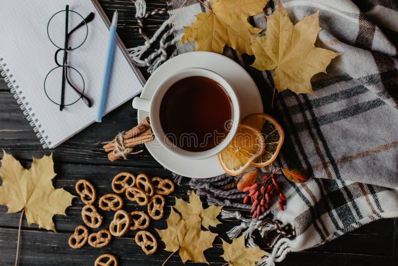 O plano outonal coloca com o lenço morno quadriculado, o copo quente do chá e as folhas caídas Vida do destilador da vista superi fotografia de stock