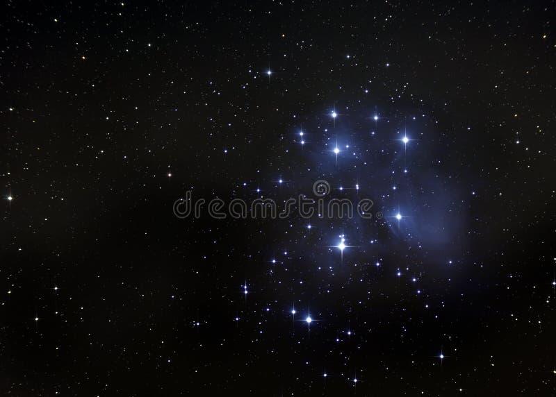 O Pleiades ilustração royalty free