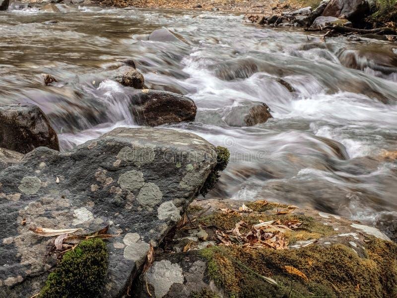 O ponto inicial em um rio pequeno imagens de stock royalty free