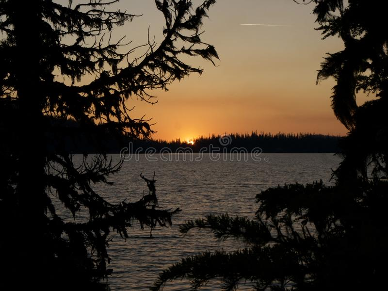 O por do sol atrás da árvore em Waldo Lake é um lago alpino natural nas montanhas da cascata do U S Estado de Oregon fotografia de stock