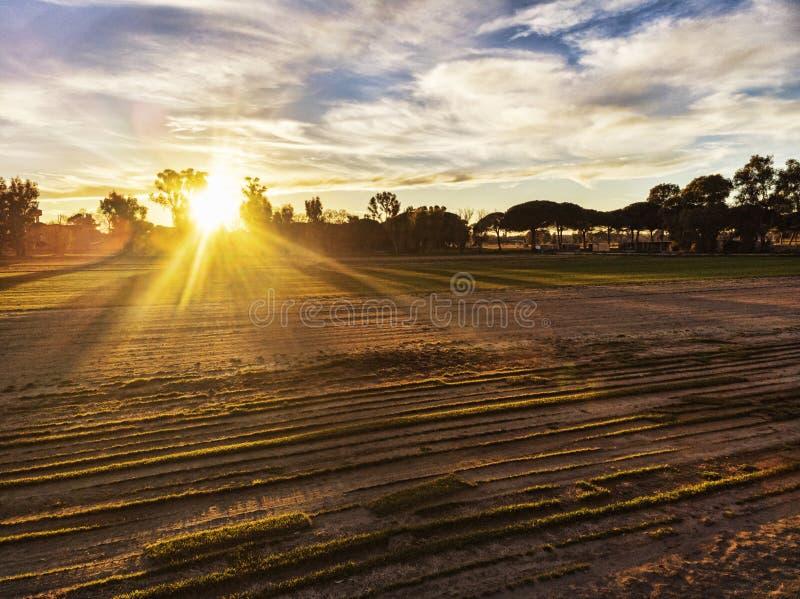 O por do sol de surpresa no campo acima dos campos cultivados e no sol entre árvores espalha seus raios imagem de stock