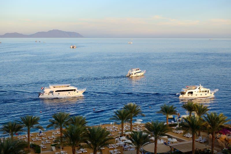 O por do sol no louro, no Mar Vermelho e no motor de Naama yachts imagem de stock royalty free