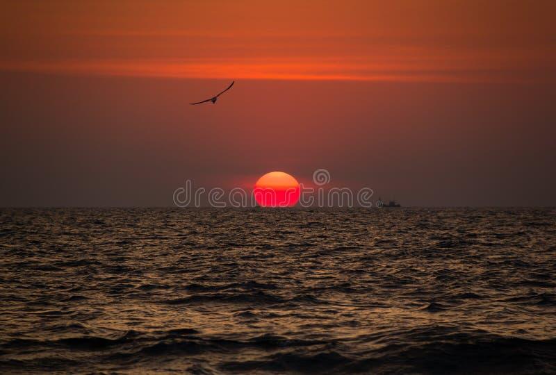 O por do sol vermelho bonito com pássaros e os navios no Goa encalham, Índia fotos de stock
