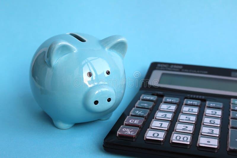 O porco leitão leitão está modestamente na calculadora fotografia de stock royalty free