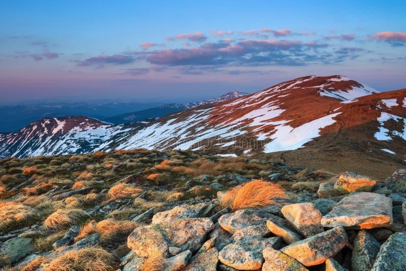 O prado com as rochas e a grama amarela Paisagem de picos altos das montanhas cobertas com a neve, nascer do sol cor-de-rosa no h fotos de stock royalty free