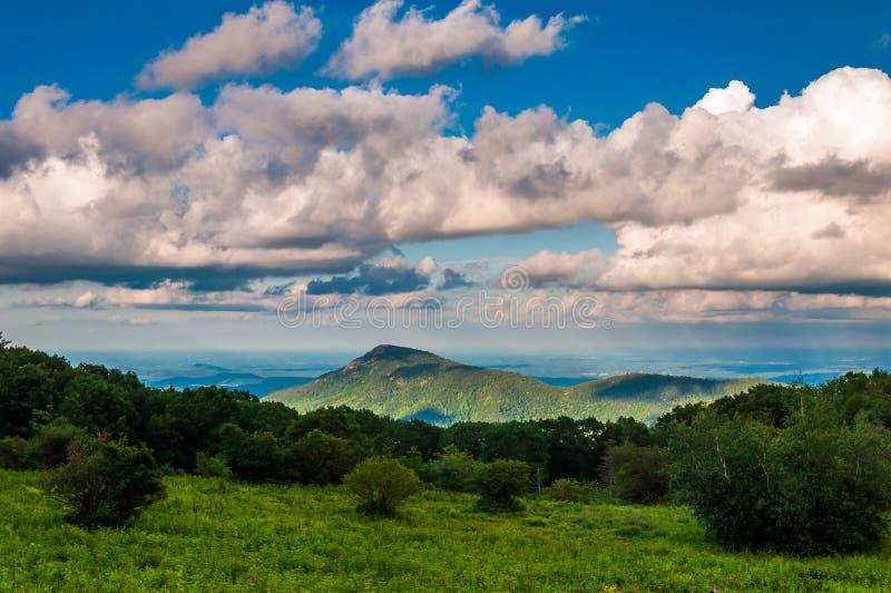 O prado e a vista da montanha velha de pano na skyline conduzem no parque nacional de Shenandoah foto de stock royalty free