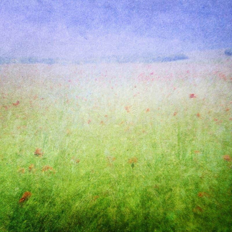 O prado floresce o fundo imagem de stock royalty free