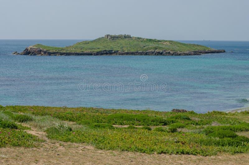 O Praia a Dinamarca Ilha faz a praia de Pessegueiro perto de Porto Covo, Portugal imagem de stock