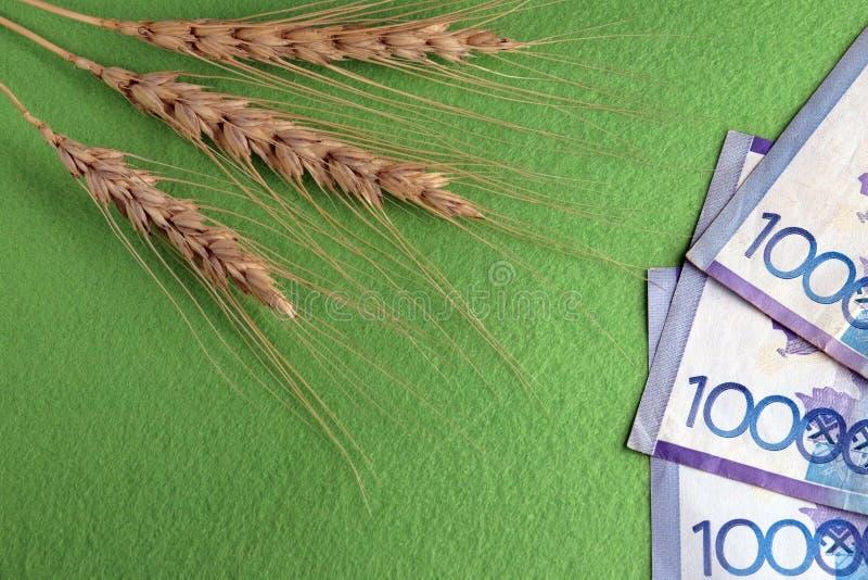 O preço do trigo em Cazaquistão Três spikelets do pão e trinta mil tenges em um fundo verde Copie o espaço fotos de stock