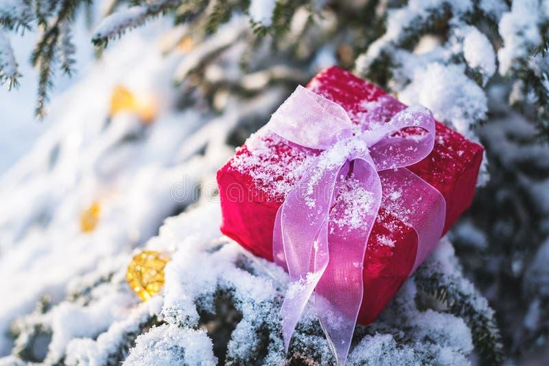 O presente vermelho de ano novo do close-up com uma fita branca ao lado dos brinquedos do Natal nos ramos de uma árvore de Natal  foto de stock