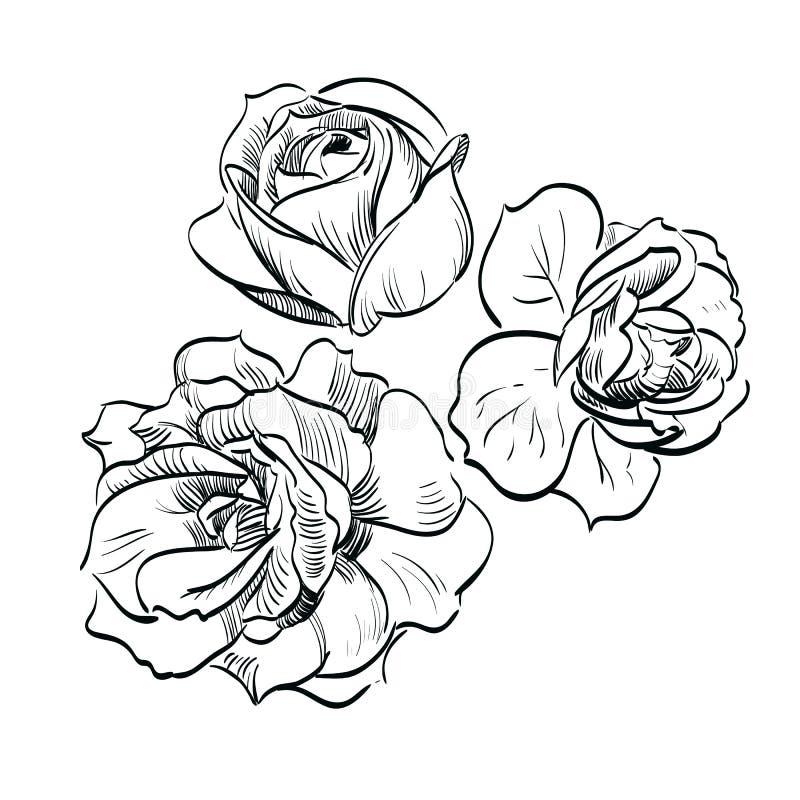 O preto levantou-se no fundo branco ilustração royalty free