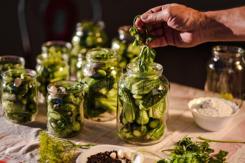 O processo de preparação de pepinos salgados para enlatar, Ucrânia fotos de stock