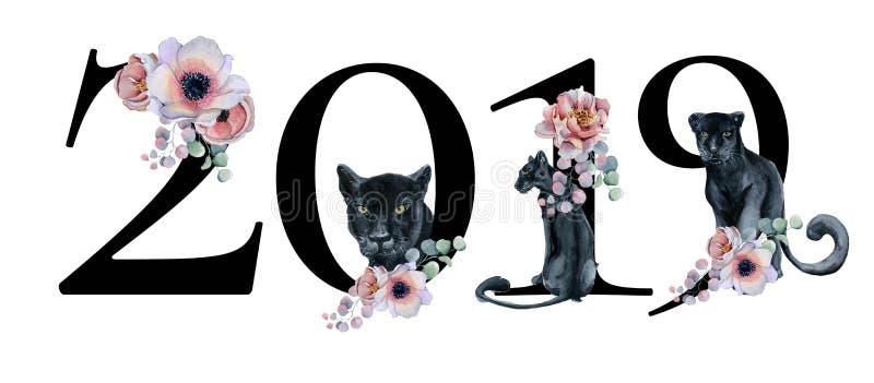 O projeto romântico floral do número do ano 2019 com peônias floresce ramalhetes e panteras pretas sinal do ano novo da aquarela ilustração royalty free