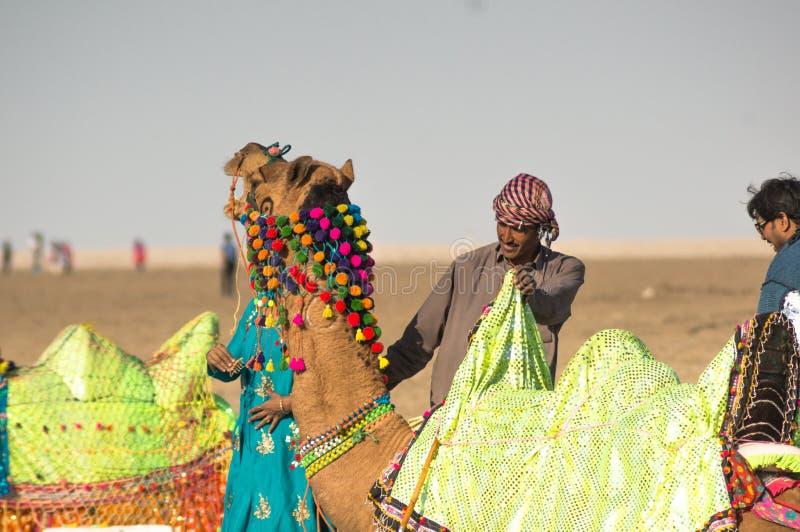 O proprietário do pastor do camelo está perto do camelo coloridamente decorado na Índia de Gujarat foto de stock