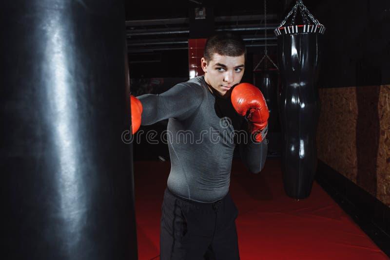 O pugilista bate um saco da velocidade no gym, treinando choque imagem de stock