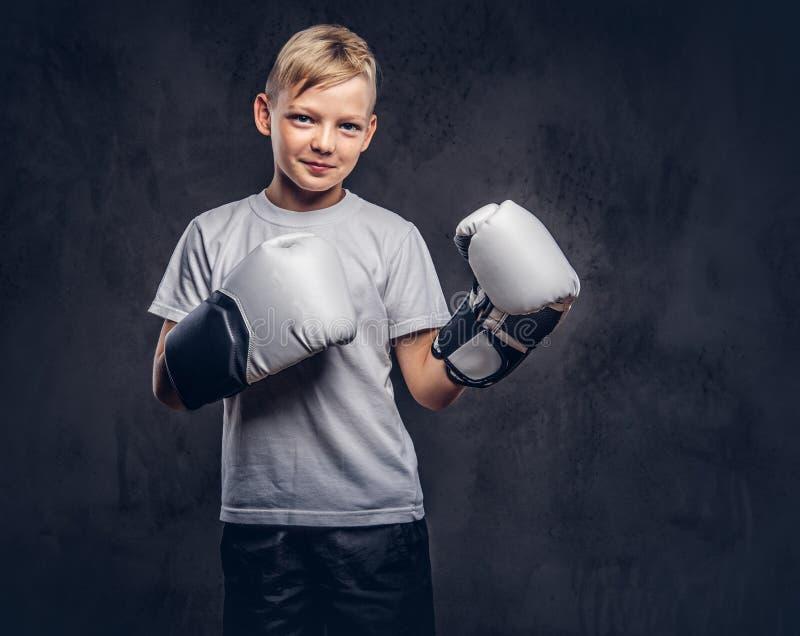 O pugilista engraçado do rapaz pequeno com cabelo louro vestiu-se nas luvas de encaixotamento vestindo do t-shirt branco que leva imagens de stock
