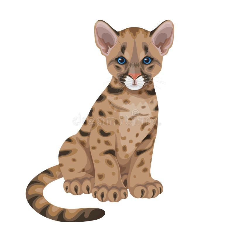 O puma Cub isolou-se ilustração royalty free