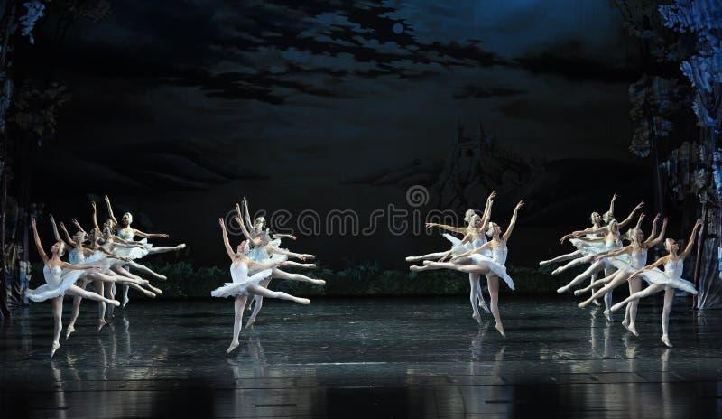 O puro na formação de bailado-bailado O Lago das Cisnes fotos de stock