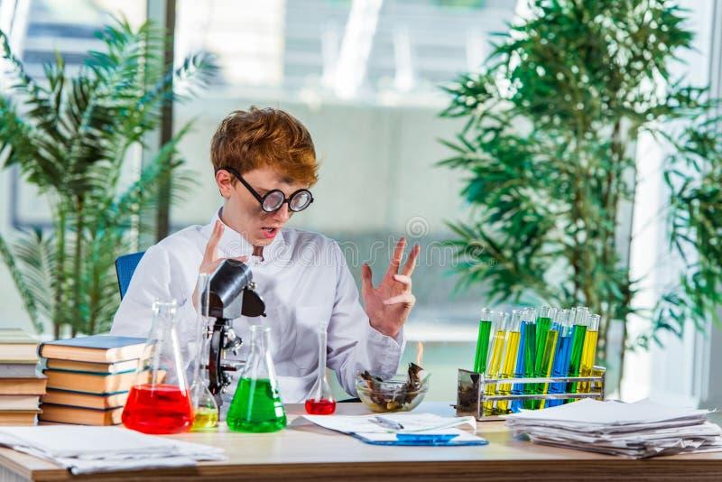 O químico louco novo que trabalha no laboratório fotos de stock
