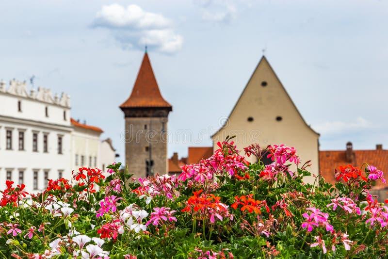 O quadrado de Masaryk em Znojmo - República Checa Centro hist?rico downtown fotografia de stock royalty free