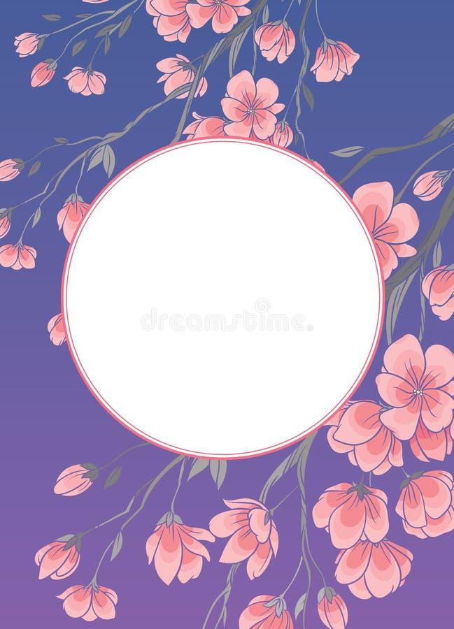 O quadro com cereja sakura floresce o molde do vetor ilustração royalty free