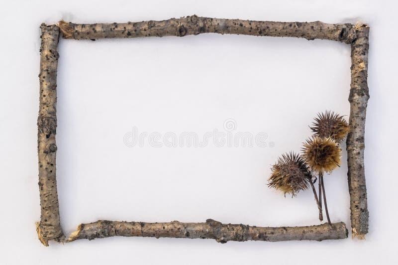 O quadro de cartão da floresta ramifica na neve Disposição para o texto de mensagem e os artigos da adição imagem de stock