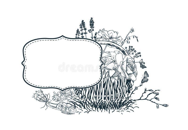 O quadro de cartão do vetor da flor gravou o esboço do bascket ilustração do vetor