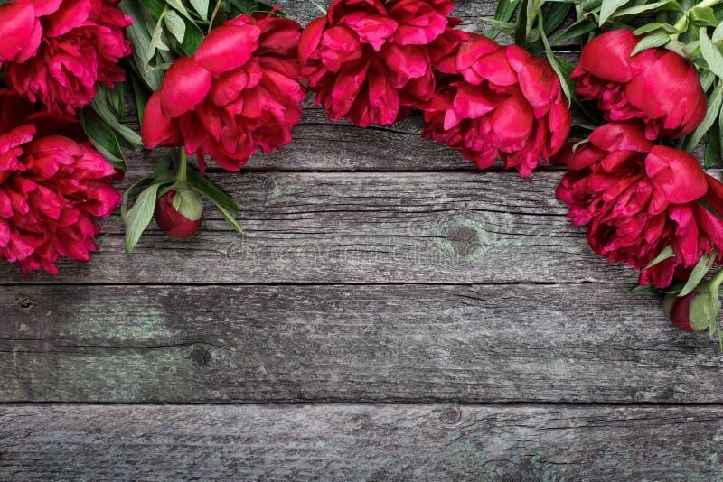 O quadro floral com peônias cor-de-rosa floresce no fundo de madeira rústico fotos de stock