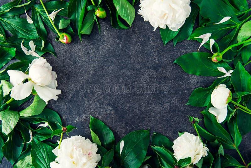O quadro floral da grinalda com as flores brancas e o verde da peônia sae no fundo da pedra do preto escuro Configuração lisa, vi fotografia de stock royalty free