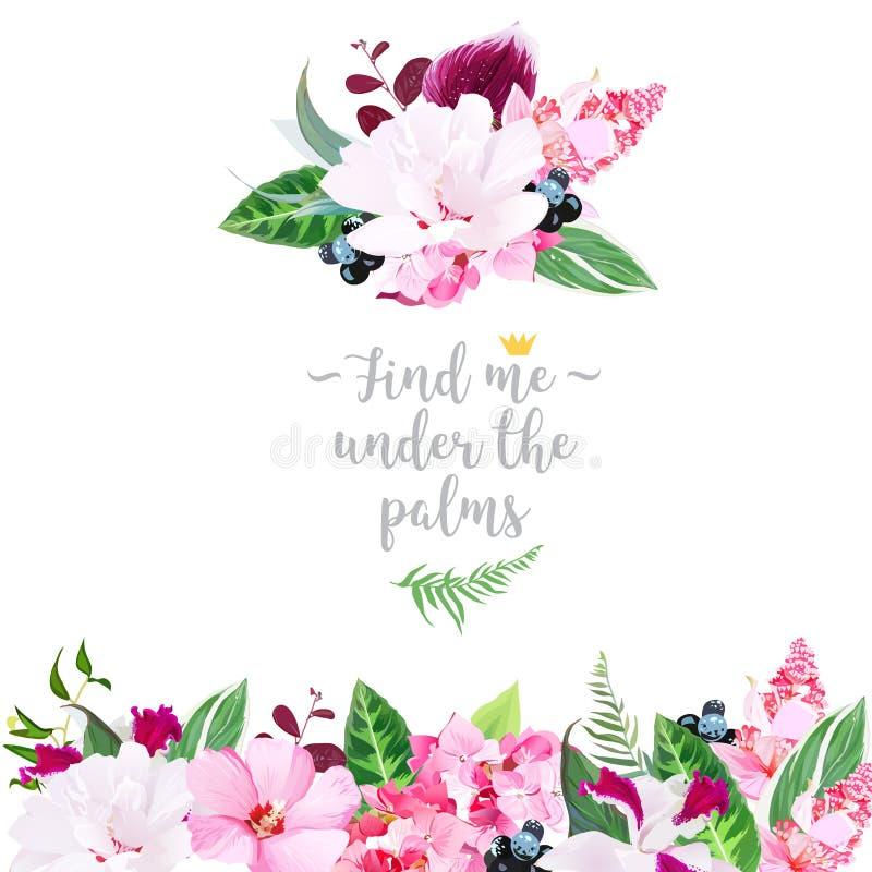 O quadro floral tropical arranjou do hibiscus mergulhado, medinilla, ilustração royalty free