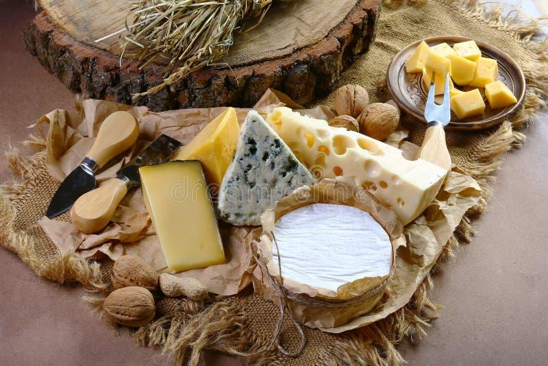O queijo italiano classificou, queijo com círculo azul do oídio, do queijo do camembert ou do brie, faca do serviço do queijo ima imagem de stock royalty free