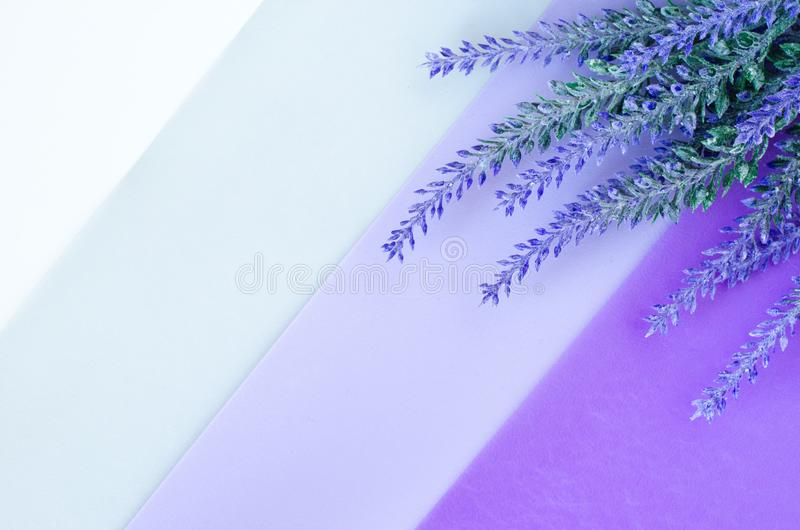 O ramalhete da alfazema coloca em fundo violeta cinzento branco listrado imagens de stock