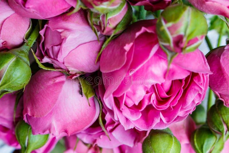 O ramalhete das peônias cor-de-rosa bonitas, rosas com folhas verdes encontra-se em uma tabela de madeira imagens de stock