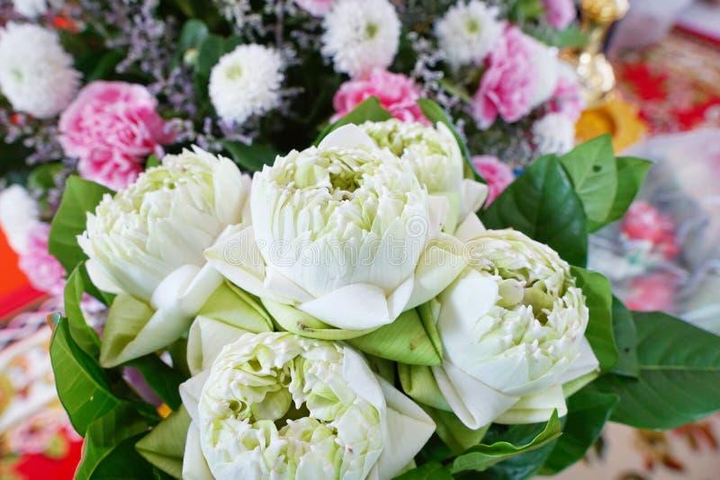 O ramalhete dos lótus brancos borrado sobre do cravo cor-de-rosa e do crisântemo branco como um fundo foto de stock royalty free
