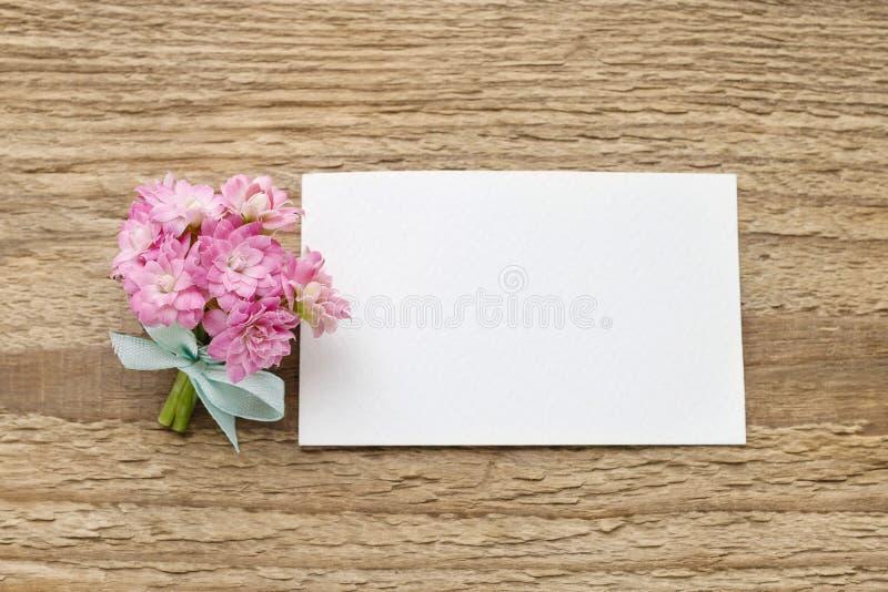 O ramalhete minúsculo bonito do blossfeldiana cor-de-rosa do kalanchoe floresce o foto de stock royalty free