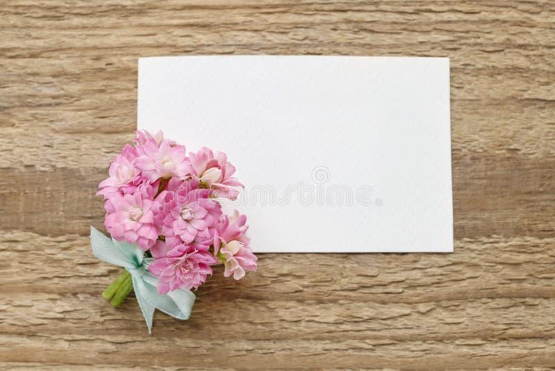 O ramalhete minúsculo bonito do blossfeldiana cor-de-rosa do kalanchoe floresce o fotos de stock royalty free