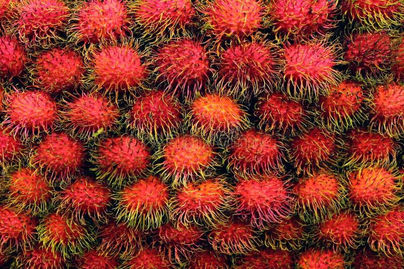 O Rambutan fresco, rambutans frutifica muitos para o fundo, fruto delicioso doce do rambutan, frutos saudáveis vermelhos rambutan fotos de stock royalty free