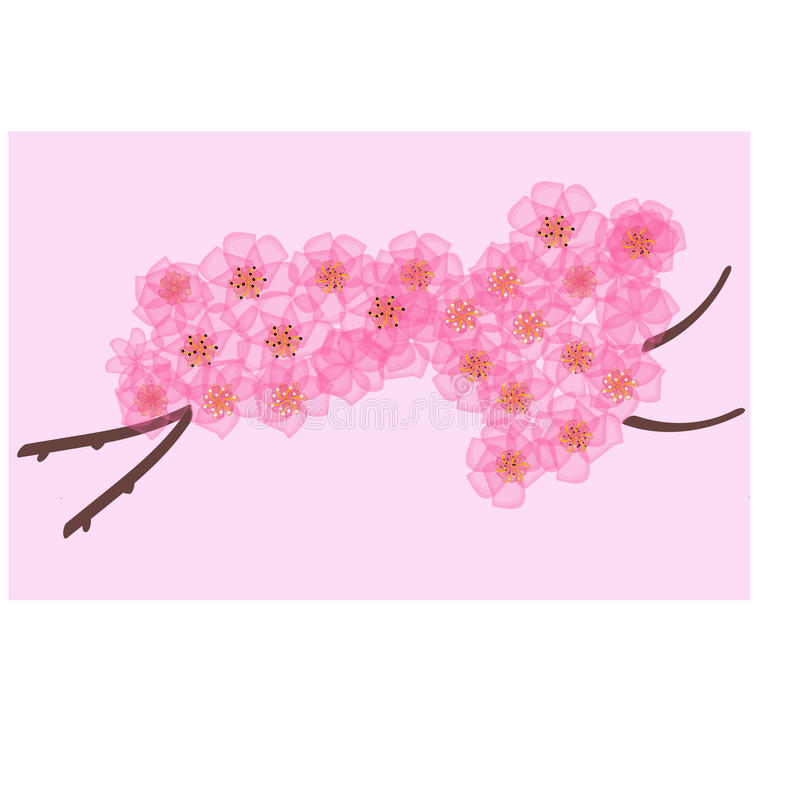 O ramo realístico da cereja de sakura japão com florescência floresce ilustração stock