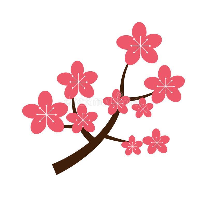 O ramo realístico da cereja de sakura japão com florescência floresce a ilustração do vetor ilustração stock
