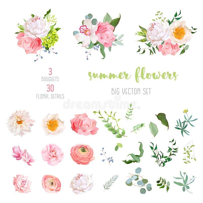 O ranúnculo, aumentou, peônia, dália, camélia, cravo, orquídea, flores da hortênsia e coleção grande do vetor das plantas decorat ilustração stock