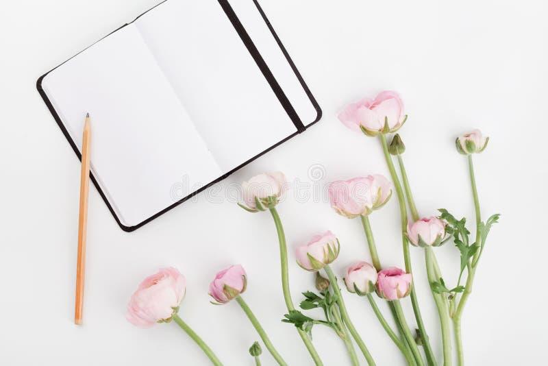 O ranúnculo bonito da mola floresce e caderno vazio na tabela branca de cima de Modelo Cor pastel Limpe o espaço para o texto imagem de stock