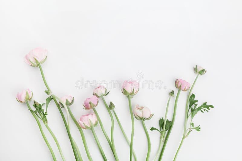 O ranúnculo bonito da mola floresce na tabela branca de cima de Beira floral cor-de-rosa Modelo do casamento Cor pastel Limpe o e foto de stock
