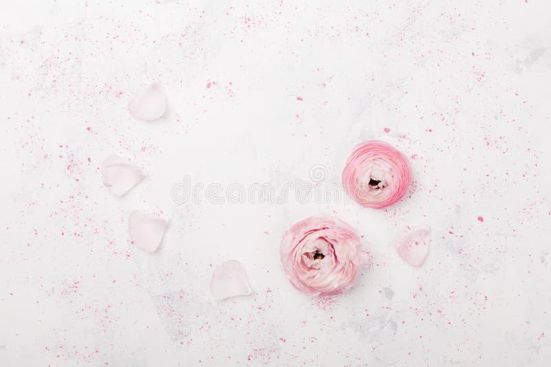 O ranúnculo cor-de-rosa bonito floresce na opinião aérea da tabela branca Beira floral na cor pastel Modelo do casamento no estil fotos de stock