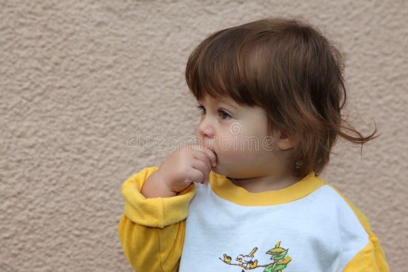 Download O rapaz pequeno foto de stock. Imagem de cabelo, innocence - 16850826