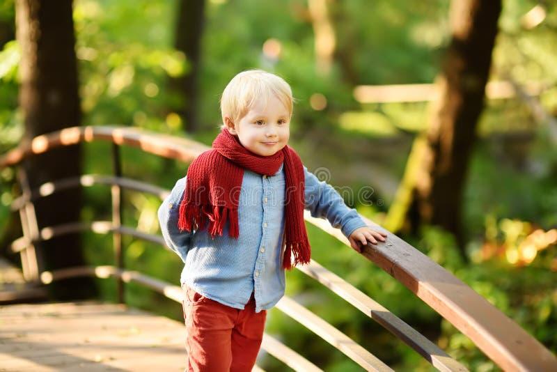 O rapaz pequeno aprecia a caminhada na floresta ensolarada ou no parque do verão fotografia de stock